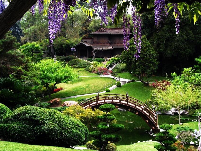 SF gardens.jpg