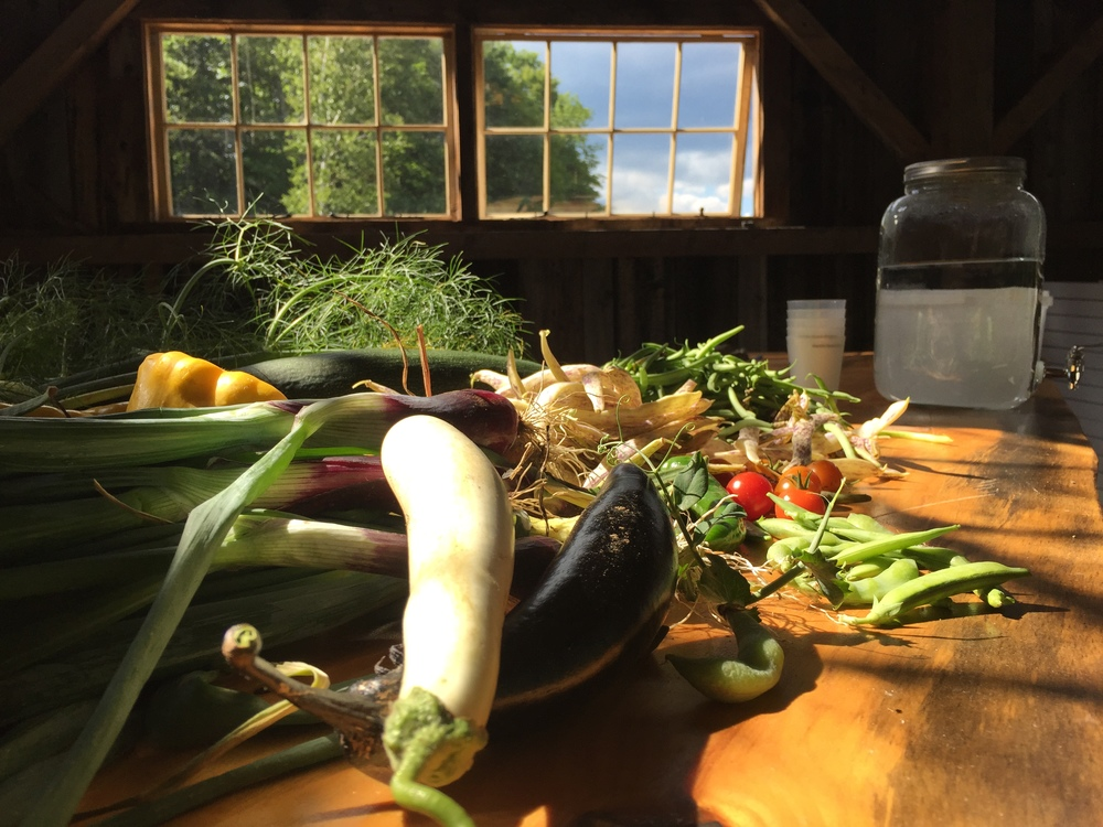 Vegetables in barn.JPG