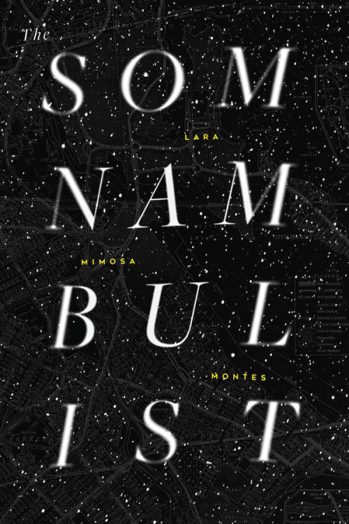 Book cover for my first book, The Somnambulist (Horse Less Press, 2016.)