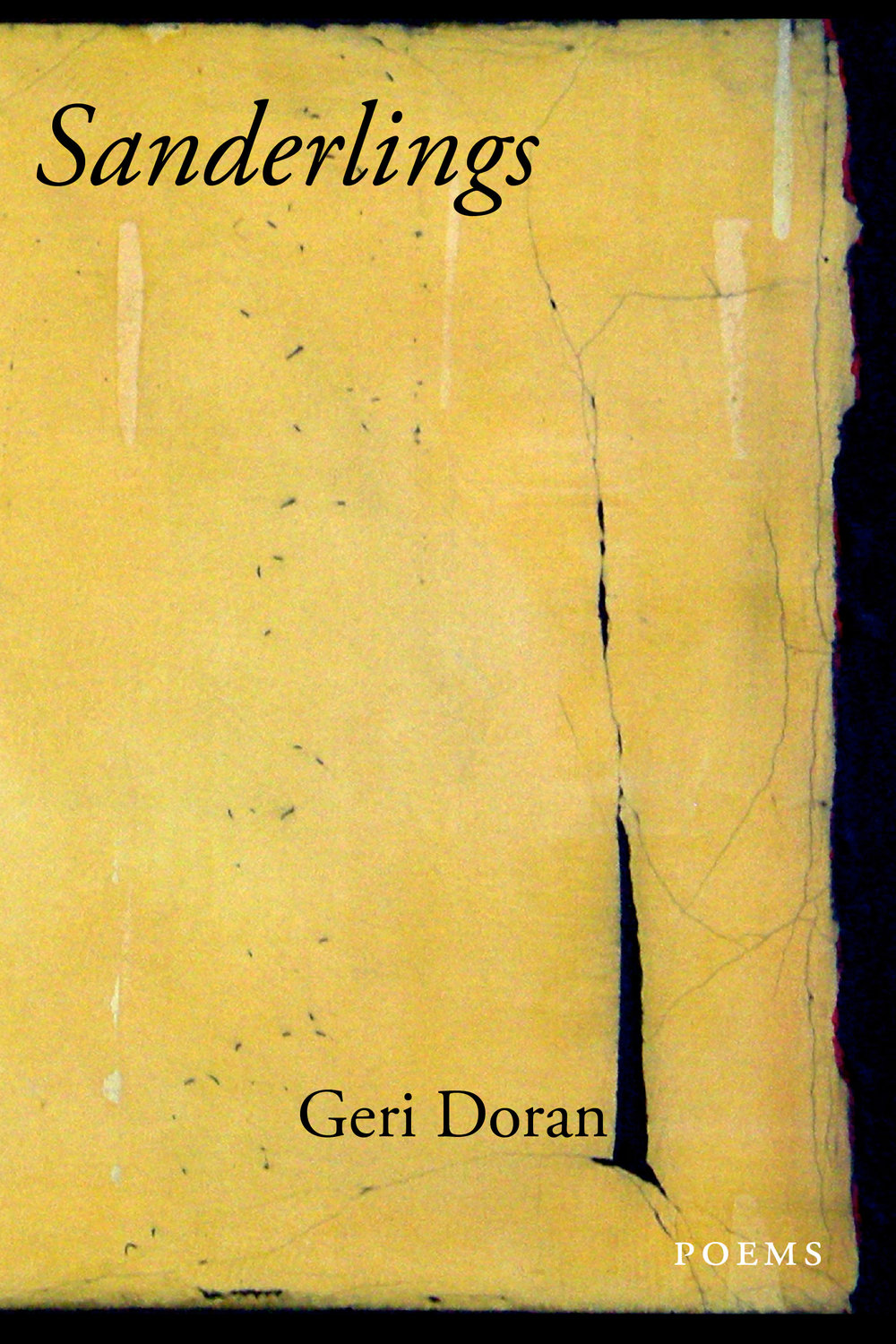 My second collection of poems, Sanderlings (Tupelo Press, 2011).