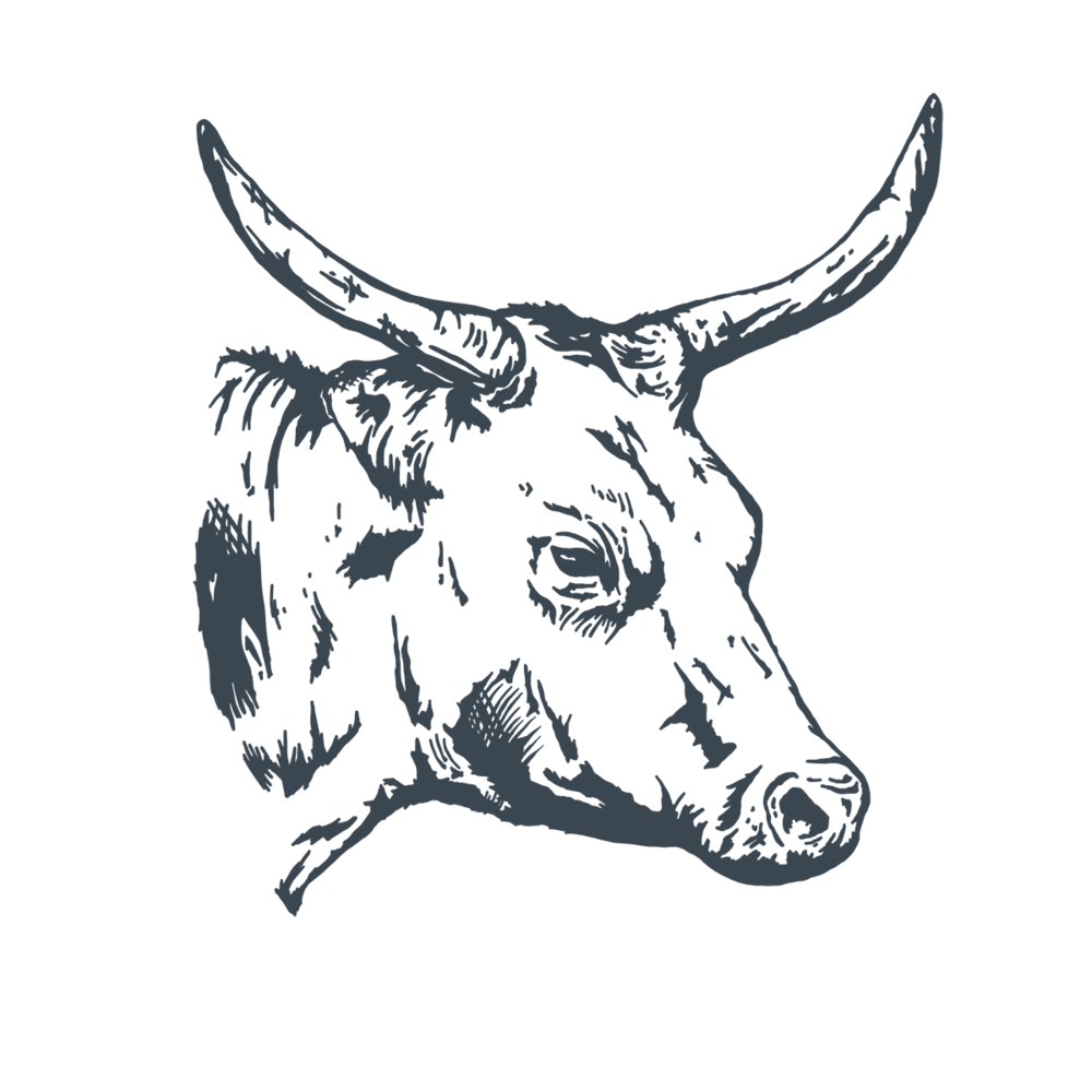 Cow-02.png