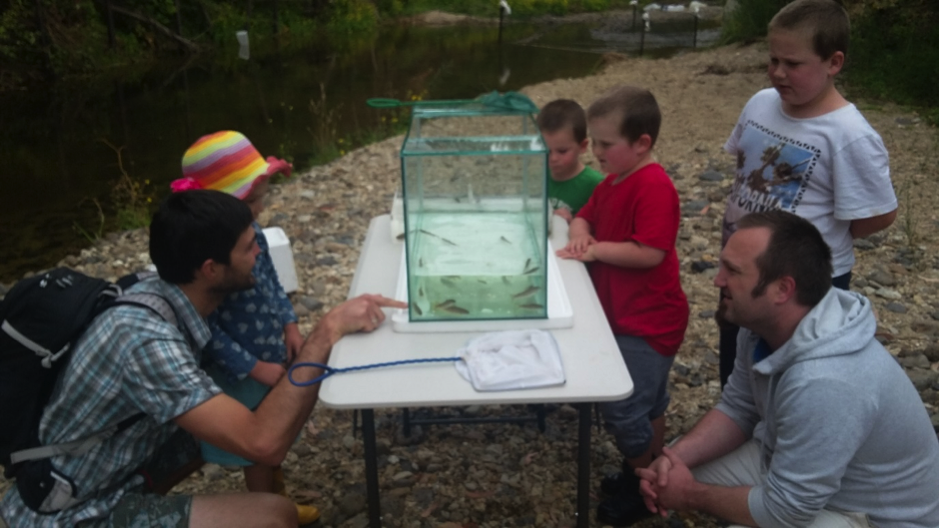Parents and children enjoyed seeing juvenile fish up close