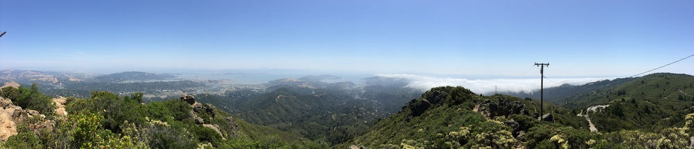 Top of Tam. Ignore the telephone pole.