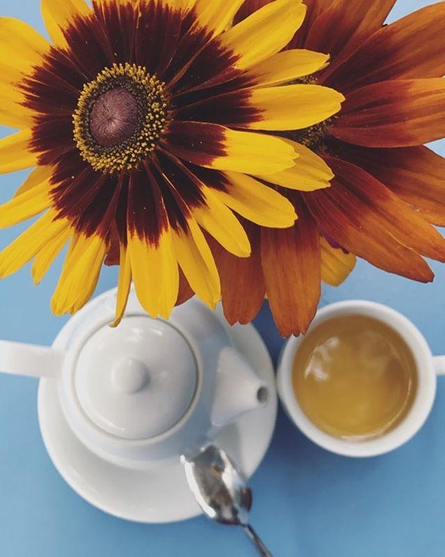 How do you start your mornings?? 🙌🏻☕️ - - #breakfast #morningbreakfast #harborbreakfast #yummy #tea #teamorning #littleitalysandiego #littleitalysd #sandiegoeats #bestofsandiego