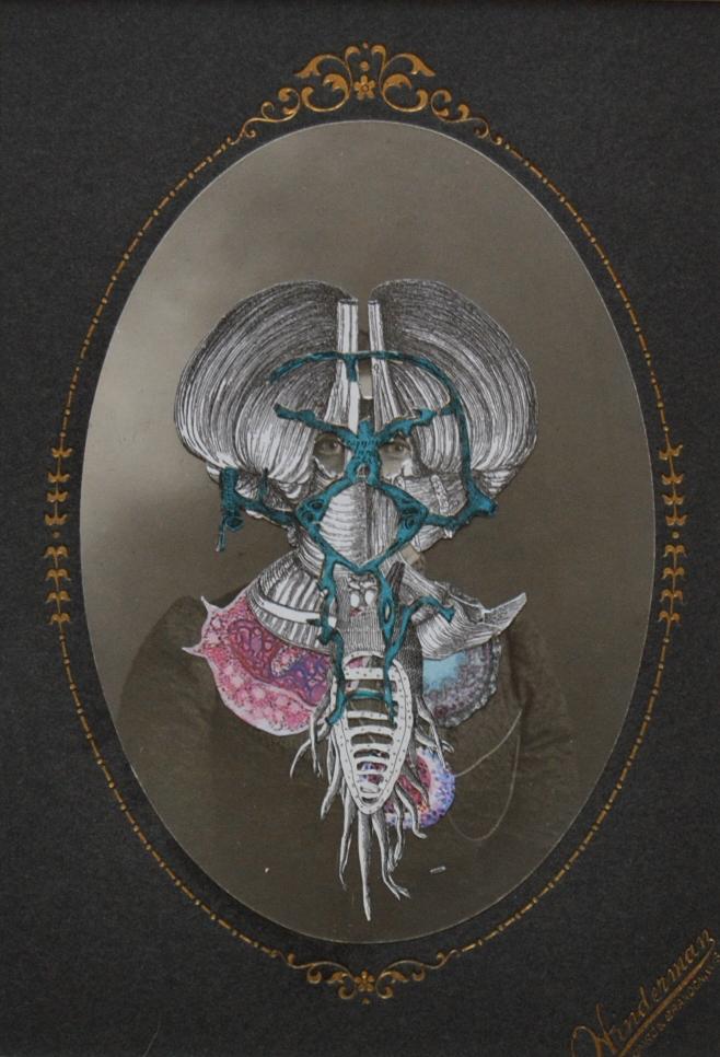 Hyacintho Domina Larvatum