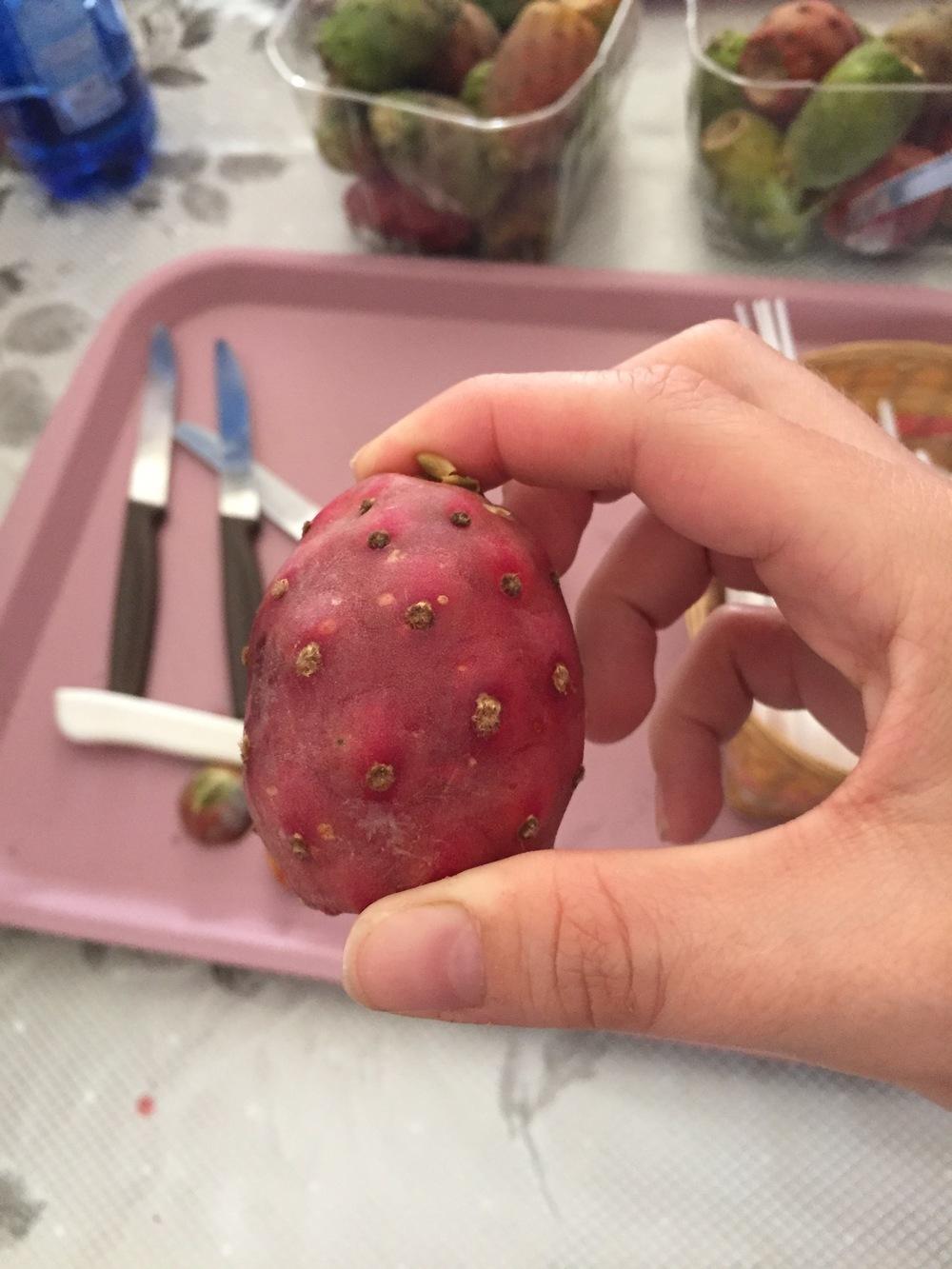 Freshly-picked cactus fruit