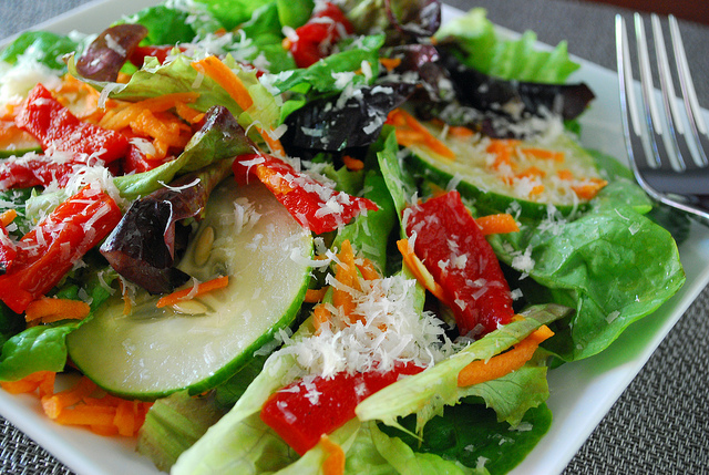 Physician Assistant Programs Nutrition