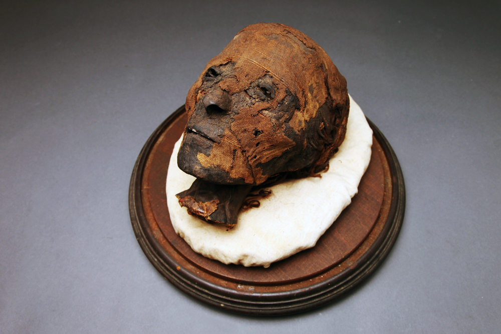 Important Egyptian  ca. 21st Dynasty Mummy Head With 19th Century Provenance