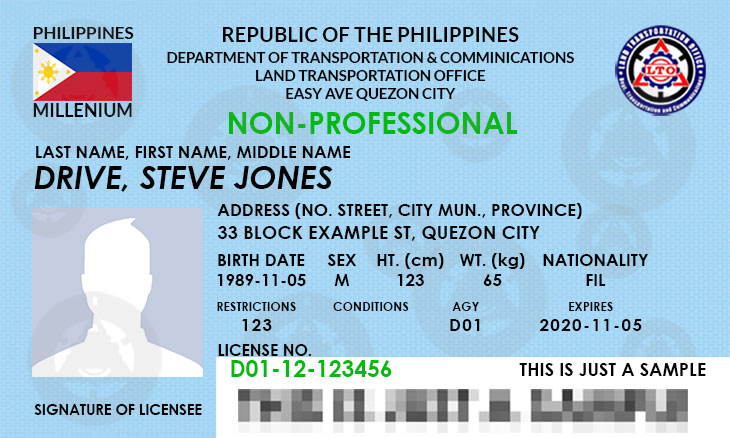 Non-Professional Driver's License