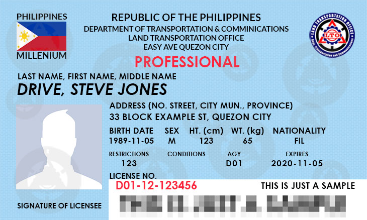 Professional Driver's License
