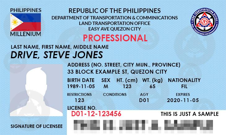 Professional Driver's License