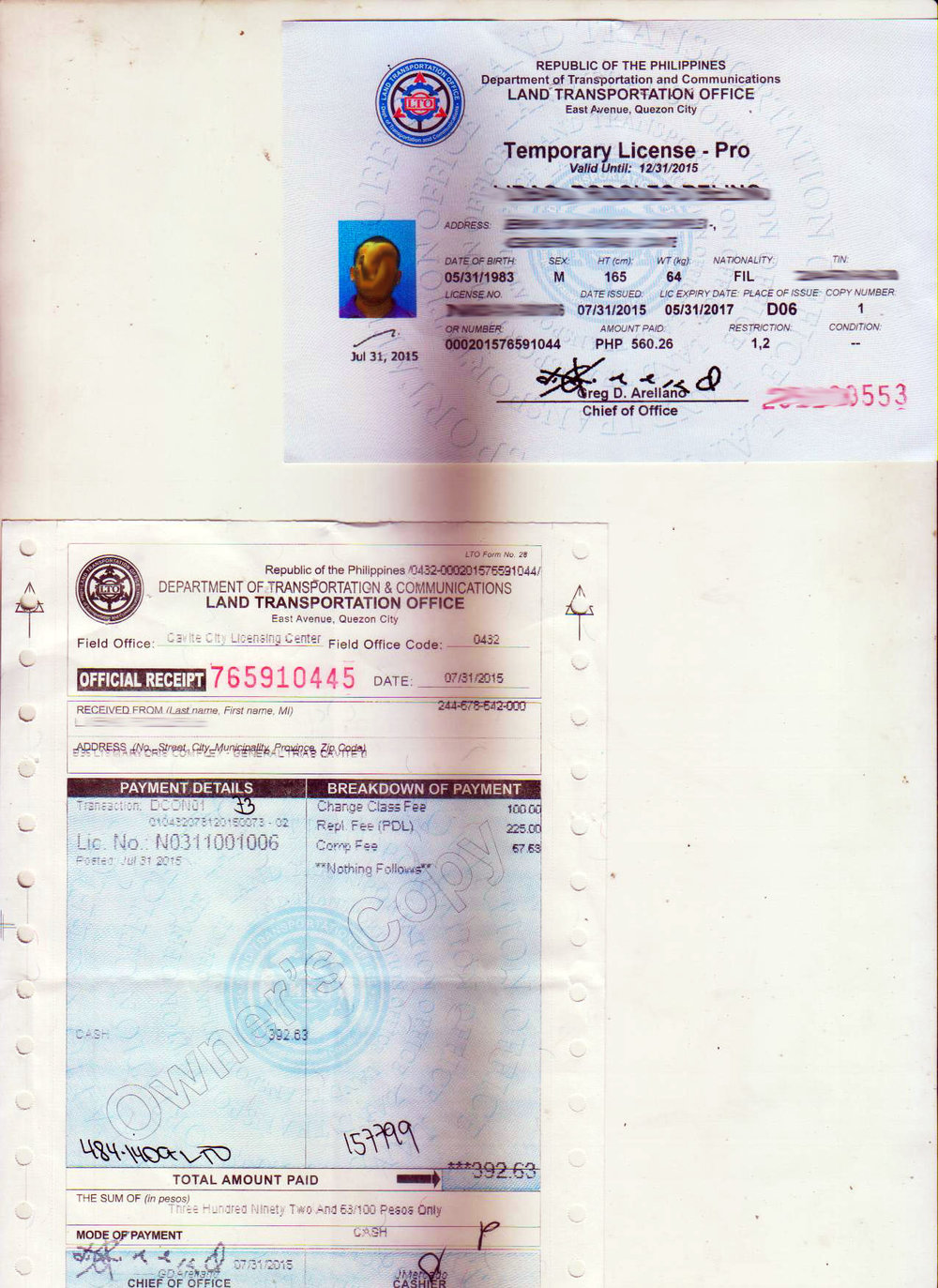 Temporary Driver's License