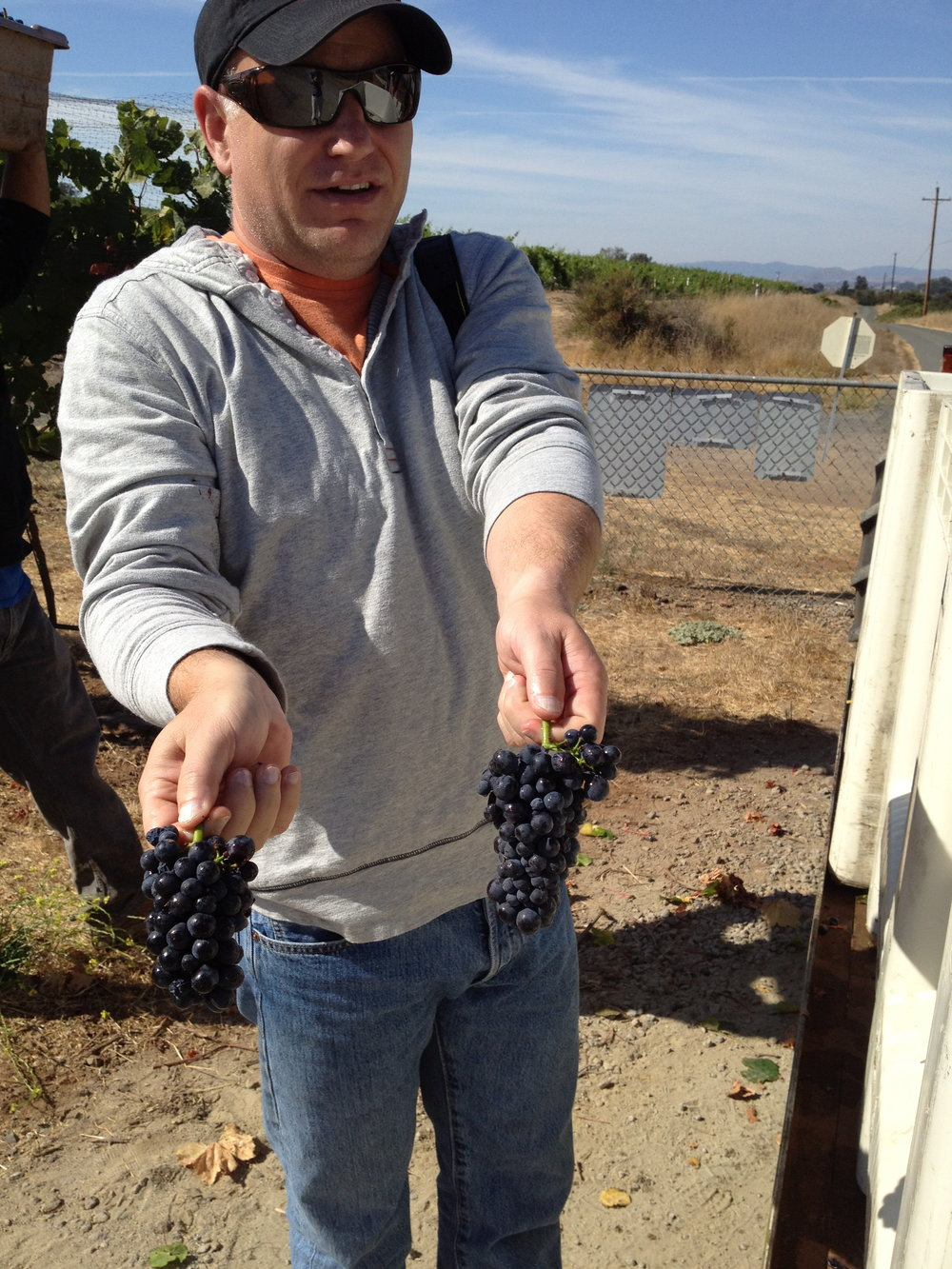 Dave with pinot noir grapes.jpg