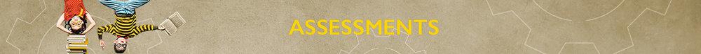 assessments-banner-2.jpg