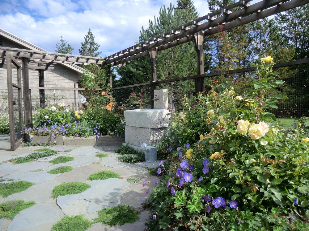 good garden 2.JPG