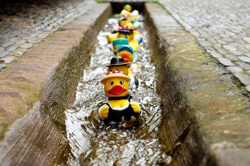 rubber-duck-bath-duck-toys-costume-106144.jpeg