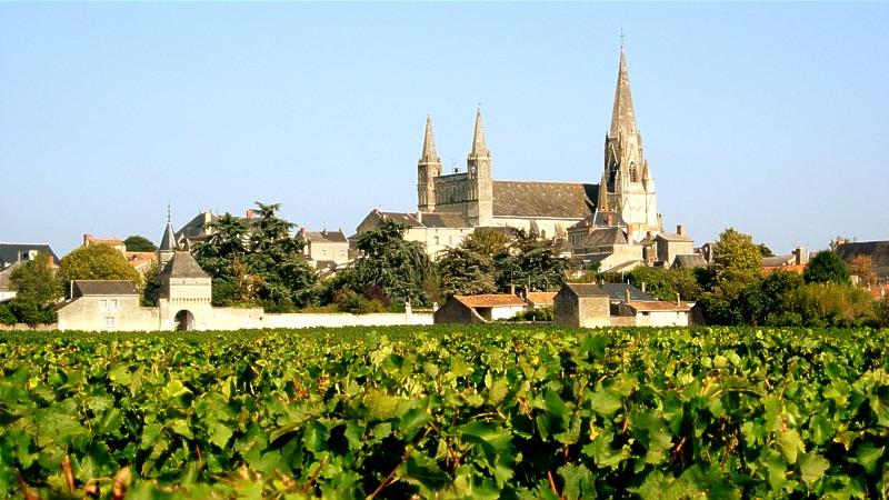 Château Tour Grise
