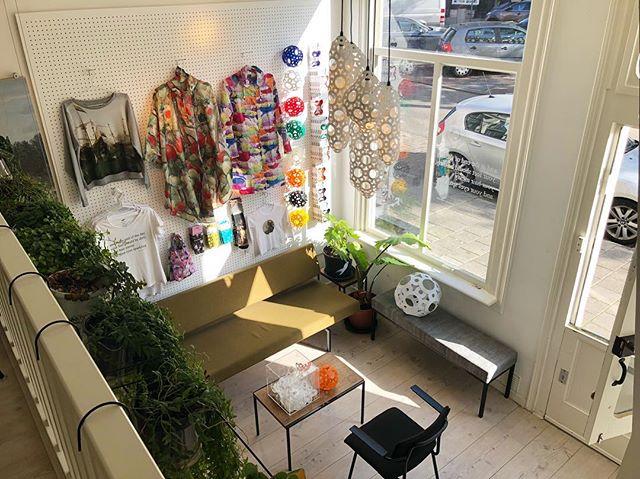 Welcome to the jungle🌿🌿🌿 . . . #westerlab #Jordaan #Amsterdam #Westerstraat #creative #studio #creationspace