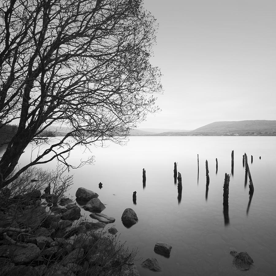 Lake Sentiments