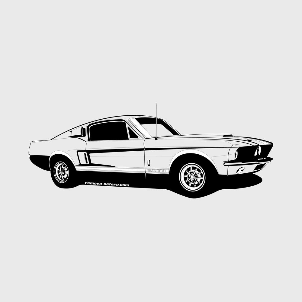 Shelby GT 500 copy.jpg