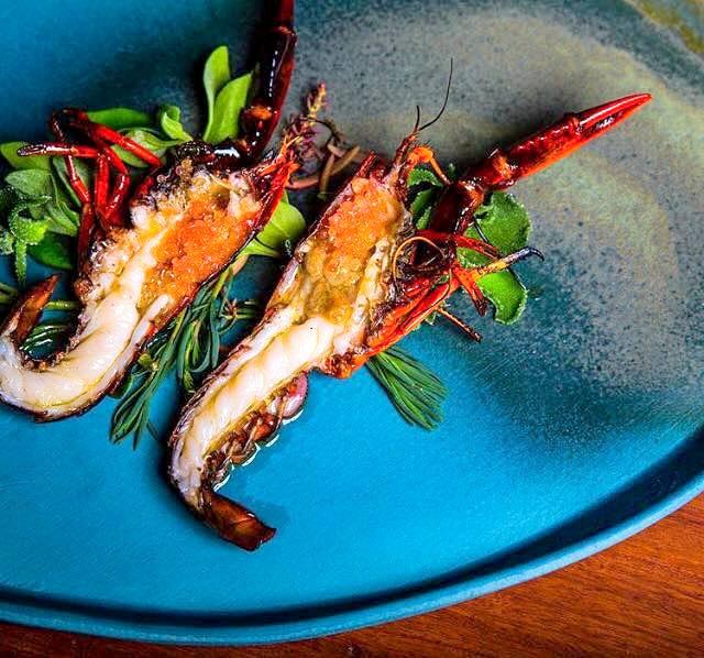 Lobster -