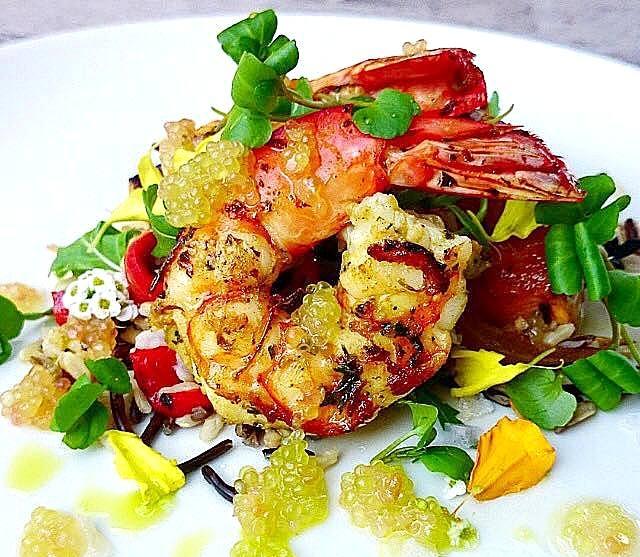 Shrimp -