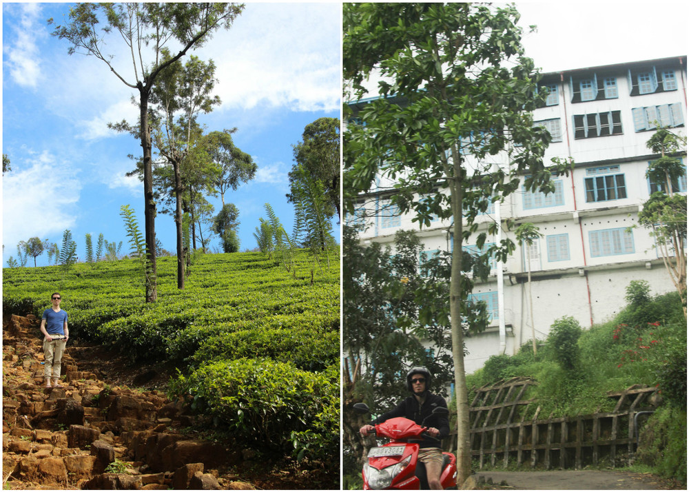 Sri_Lankan_Travel_Guide_Itinerary_Budgeting__Ella_Hiking_Adam's_Peak_Where_to_stay_teac_factory.jpg
