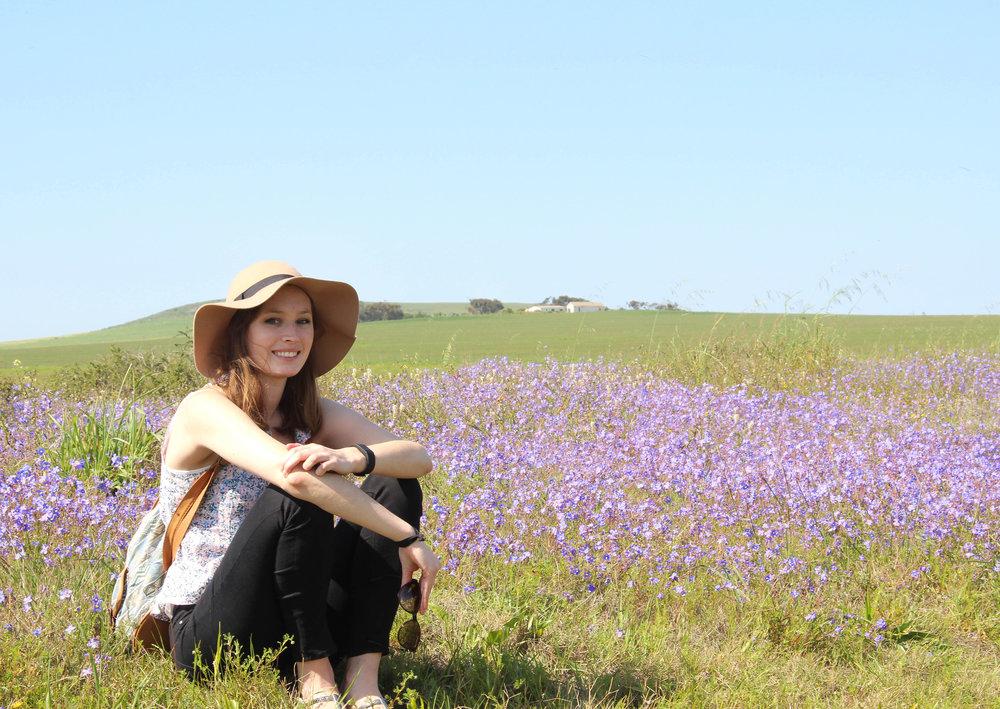 Where_to_see_flowers_in_Darling_3.jpg