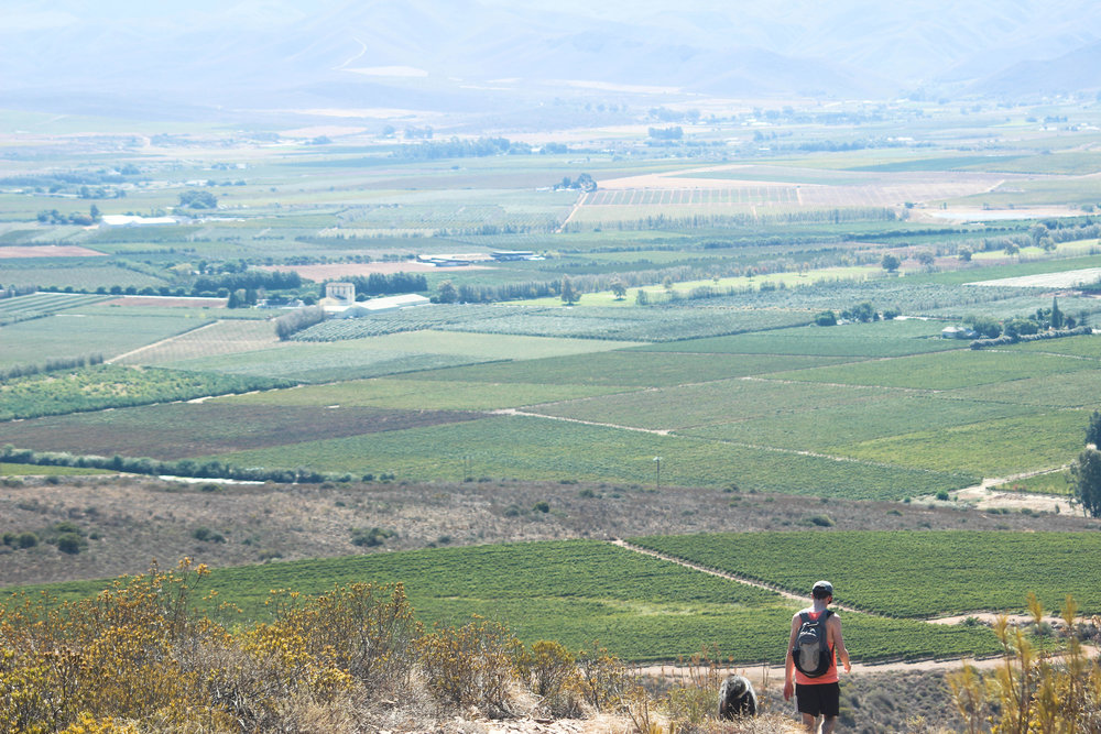 hiking_breede_valley_robertson.jpg