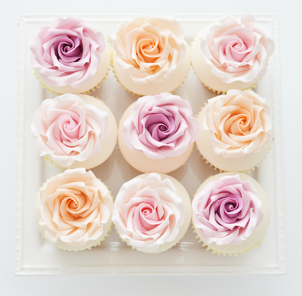 all-the-rose-cupcakes.png