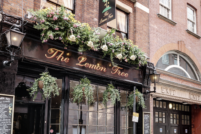 The Lemon Tree Covent Garden