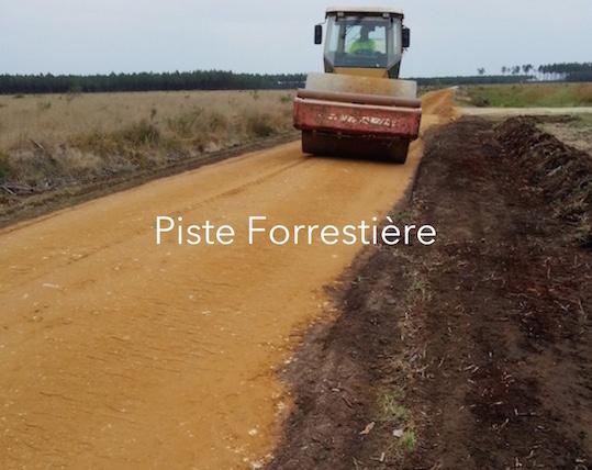 Piste Forrestière.jpg