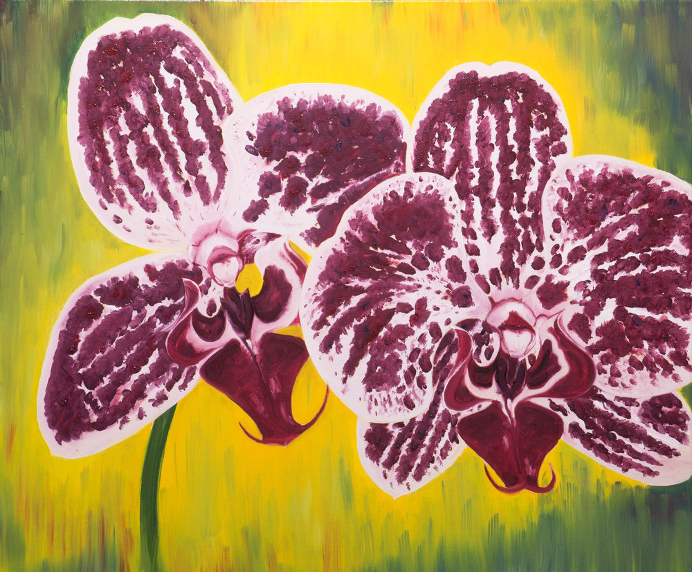 """""""Moth orchids"""", oil on 20x24""""(51x61cm) stretched linen canvas"""