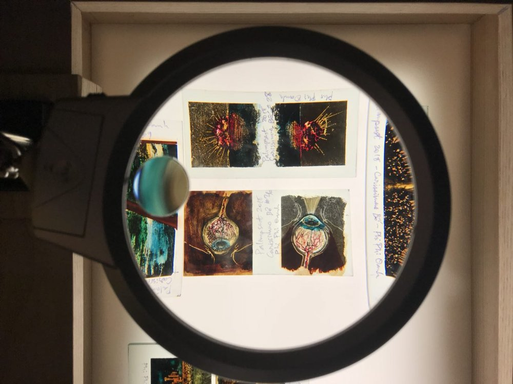 Phi Phi Oanh's lacquer works. There are adjustable magnifying lenses to allow visitors to take a closer look at the intricate details of each piece.