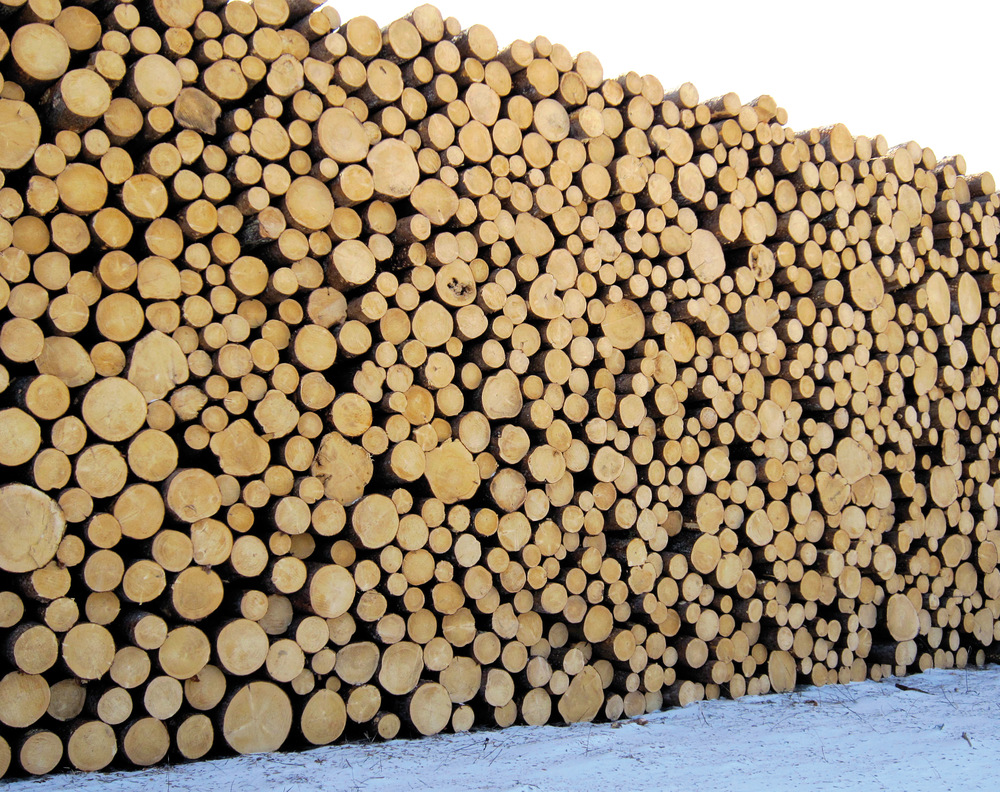 Skogeiere i Hedmark solgte tømmer for 1,02 milliarder kroner i 2015. Bildet viser tømmerterminal i Elverum. Foto: Kate Ter Haar