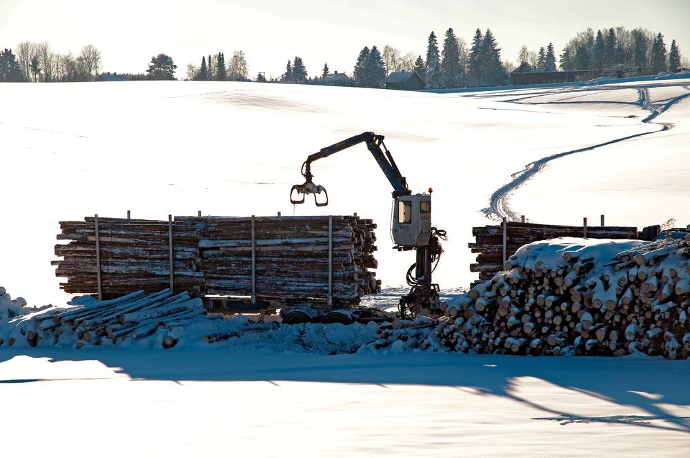Opplasting av tømmer på tømmerbil. Ås, Akershus. Foto: Lars Sandved Dalen, NIBIO