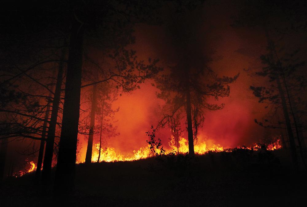 De fleste skogbranner i Norge er relativt små, under spesielle forhold kan de raskt utvikle seg til store, ukontrollerte branner. Foto: Erik Holand