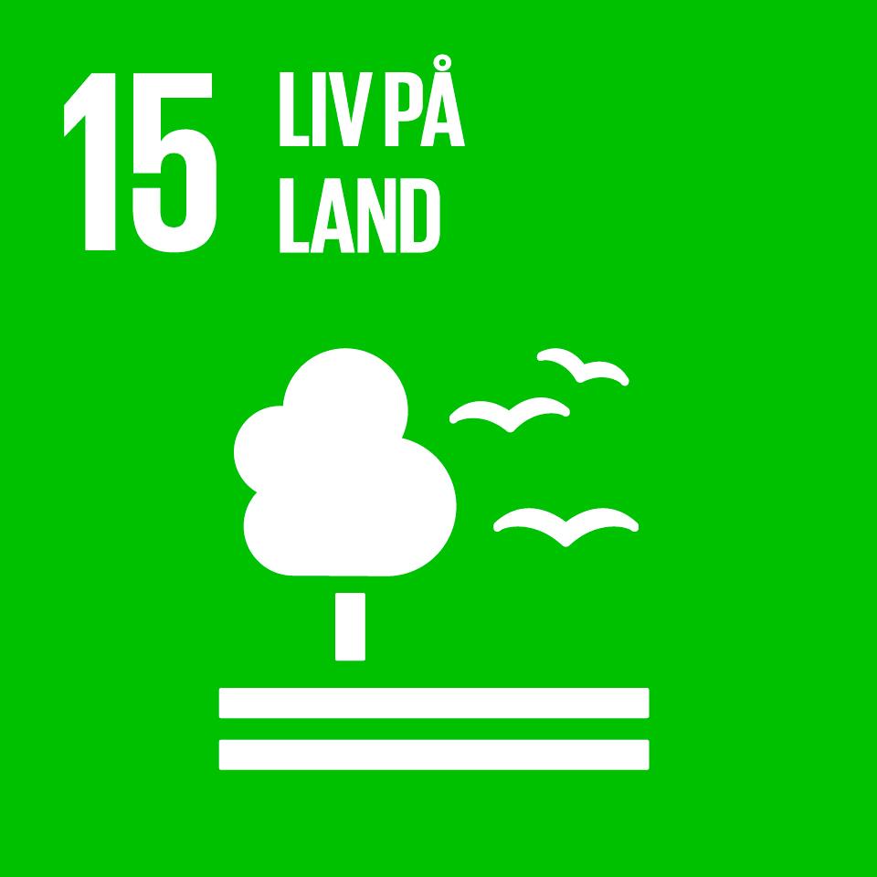 FNs bærekraftsmål er verdens felles arbeidsplan for å utrydde fattigdom, bekjempe ulikhet og stoppe klimaendringene innen 2030. I 2015 ble FNs 193 medlemsland enige om 17 mål og 169 delmål for bærekraftig utvikling. Utviklingen skal så langt det er mulig måles ved hjelp av nasjonale datakilder og statistikk.Et av FNs bærekraftmål omfatter liv på land,der et av delmålene er innen 2020 å fremme gjennomføring av en bærekraftig forvaltning av all slags skog, stanse avskoging, gjenopprette forringede skoger og i betydelig grad øke skoggjenreising og nyplanting på globalt nivå.