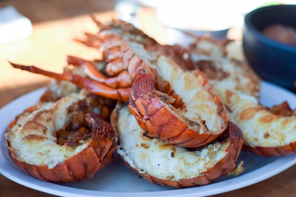 Lobster, Villa Ortega's, Puerto Nuevo, Mexico