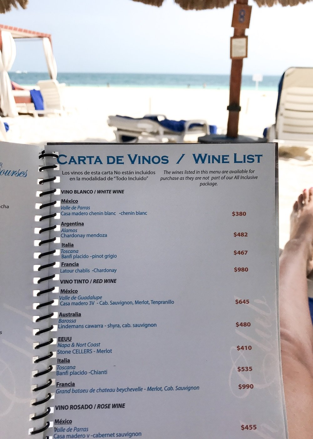 Privilege Aluxes | Isla Mujeres Mexico | With Love Paper and Wine