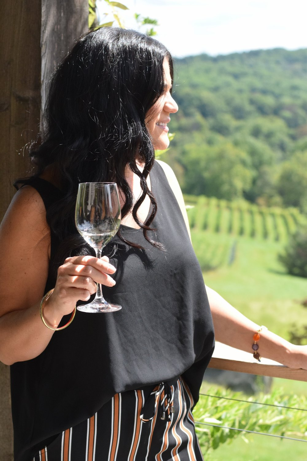 Virginia Wine Country | Linden Vineyards
