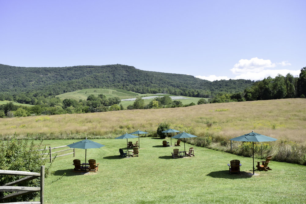 Glen Manor Vineyards | Virginia wine