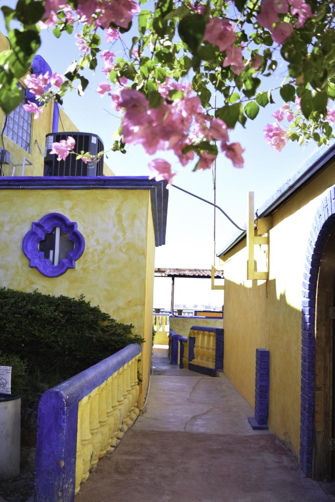 puerto penasco-7.jpg