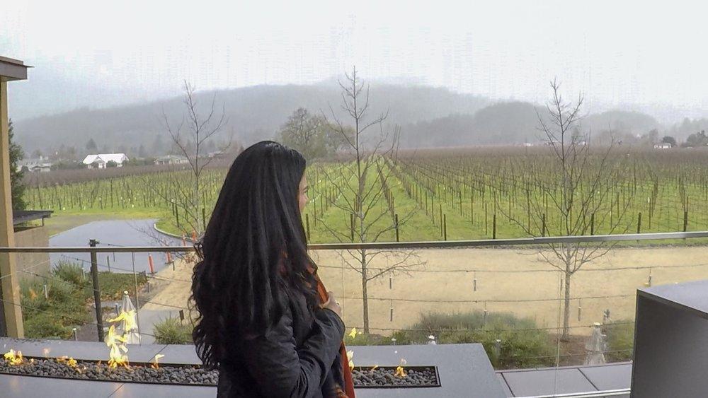 Hall Wines | Napa