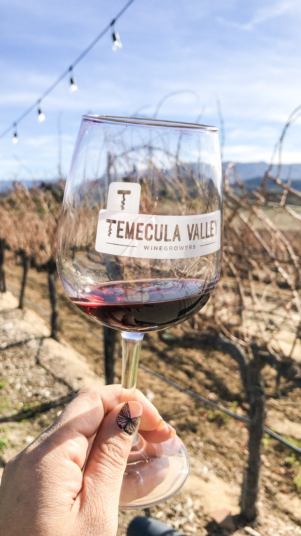 Photo by Erika Beach | Temecula Wine Country