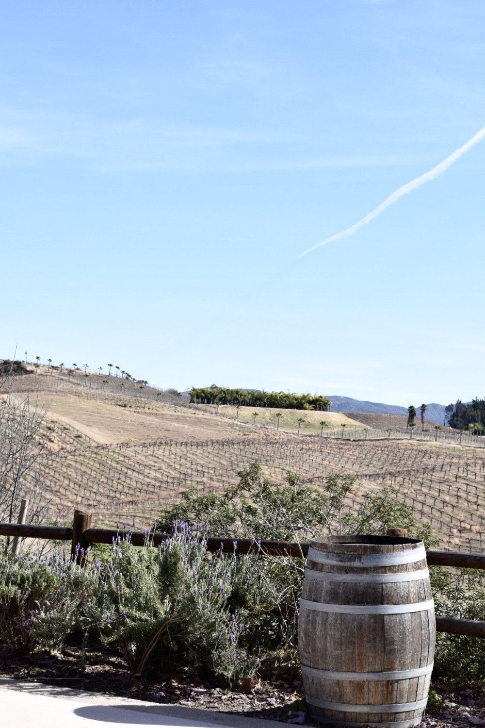 Photo by Erika Beach | Temecula Wine Country | Lumiere Winery