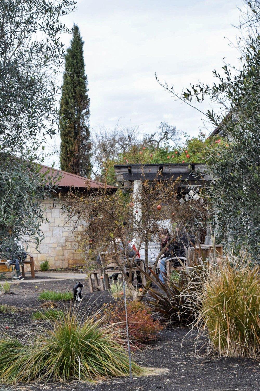 Hagafen Winery | Napa | Photo by Erika Beach