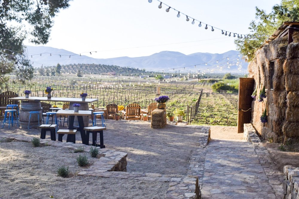 Deckman's El Mogor | Valle de Guadalupe | Photo by Erika Beach