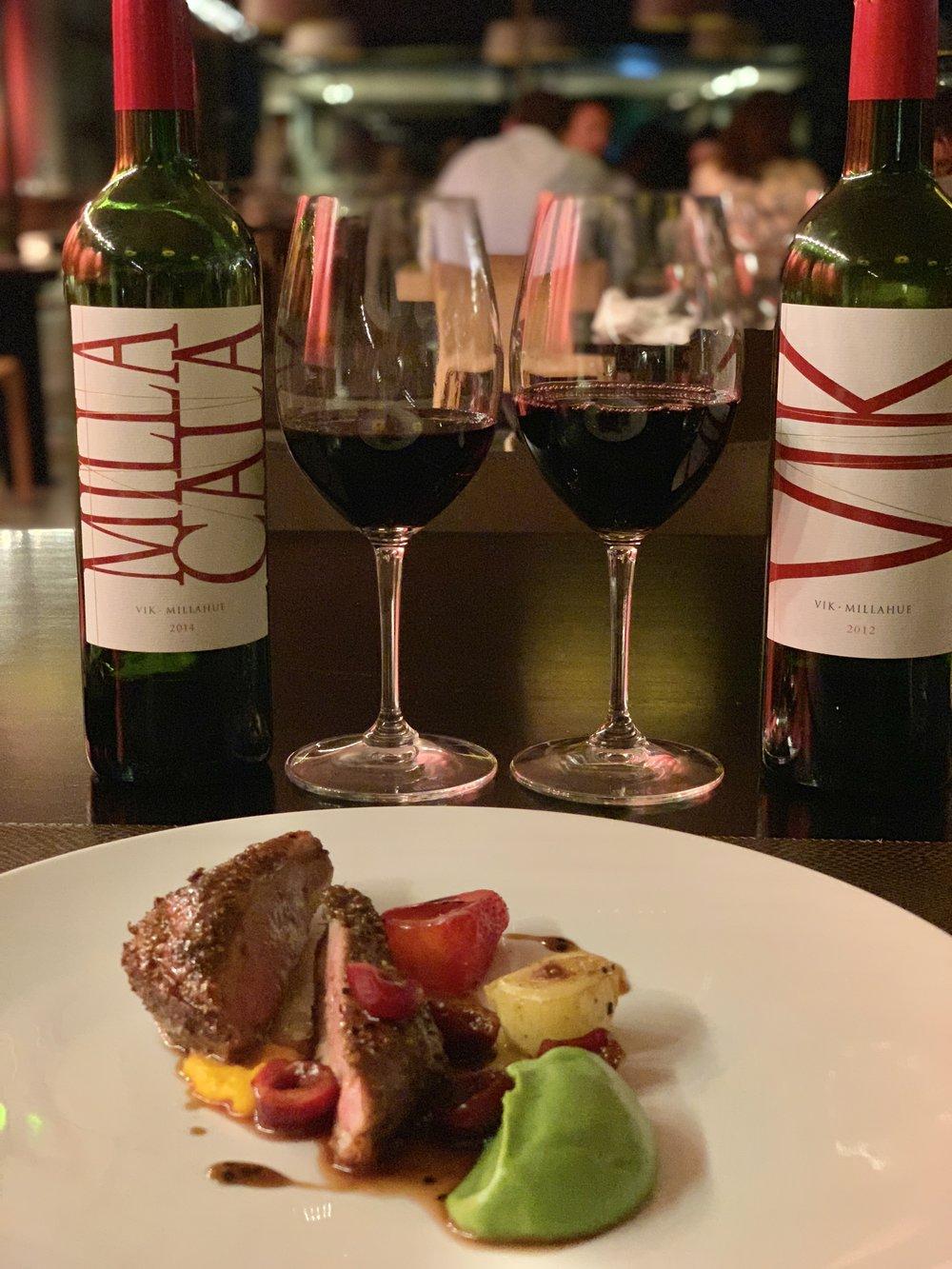 Vina VIK | VIK Retreat | Millahue | Chile