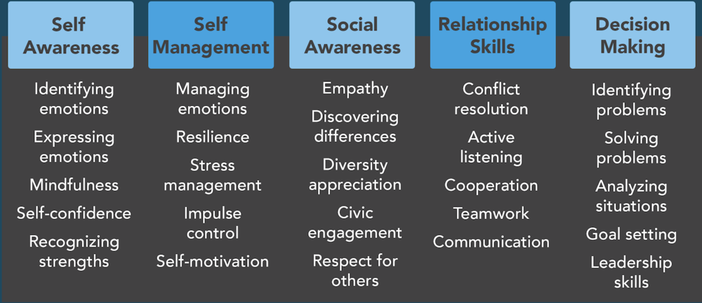 social emotional learning, core competencies, self awareness, identifying emotions, expressing emotions, mindfulness, self confidence, recognizing strengths, self management, managing emotions, resilience, stress management, impulse control, self motivations, social awareness, empathy, discovering differences, diversity appreciation, civic engagement, respect for others, relationship skills, conflict resolution, active listening, cooperation, teamwork, communication, decision making, identifying problems, solving problems, analyzing situations, goal setting, leadership skills